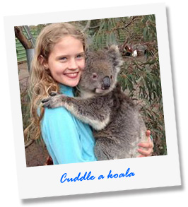 Cuddle a koala at our Wildlife Tour - Kangaroo Island