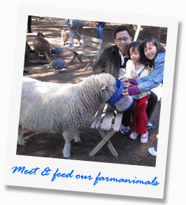 Meet and feed our farmanimals at our tour - Paul's Place Wildlife Sanctuary - Kangaroo Island