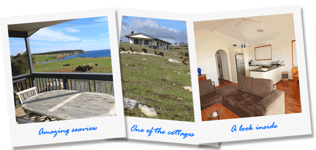 Our accommodation - Waves and Wildlife cottages - Kangaroo Island